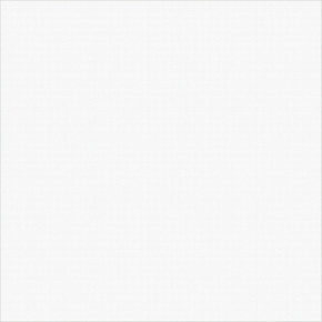 Керамогранит Diamond White  41х41